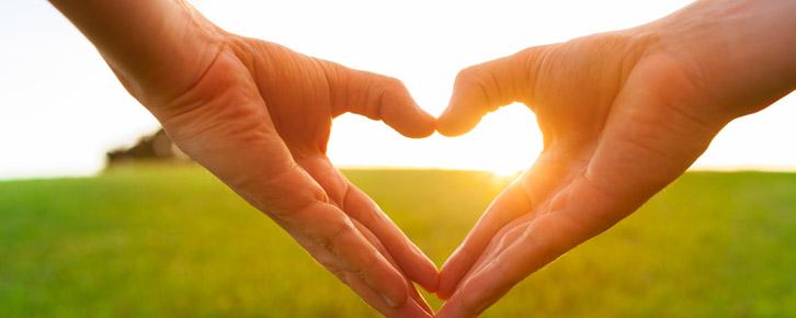 coração, amor, cuidado, relacionamento